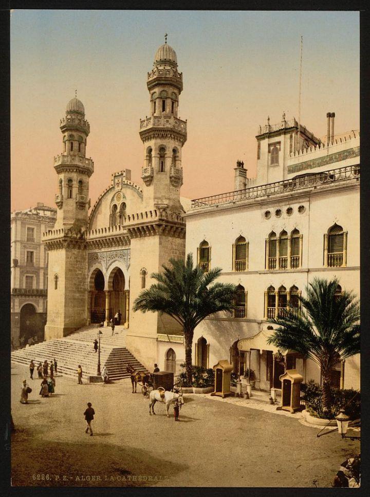 cathédrale Alger