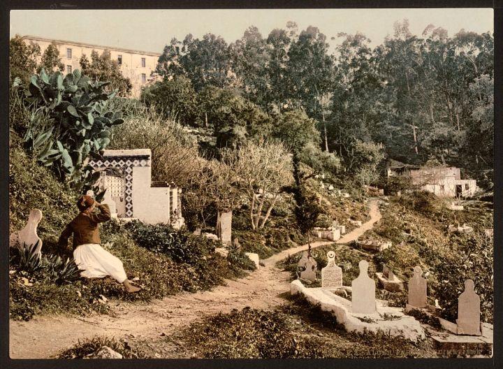 le cimetière Alger