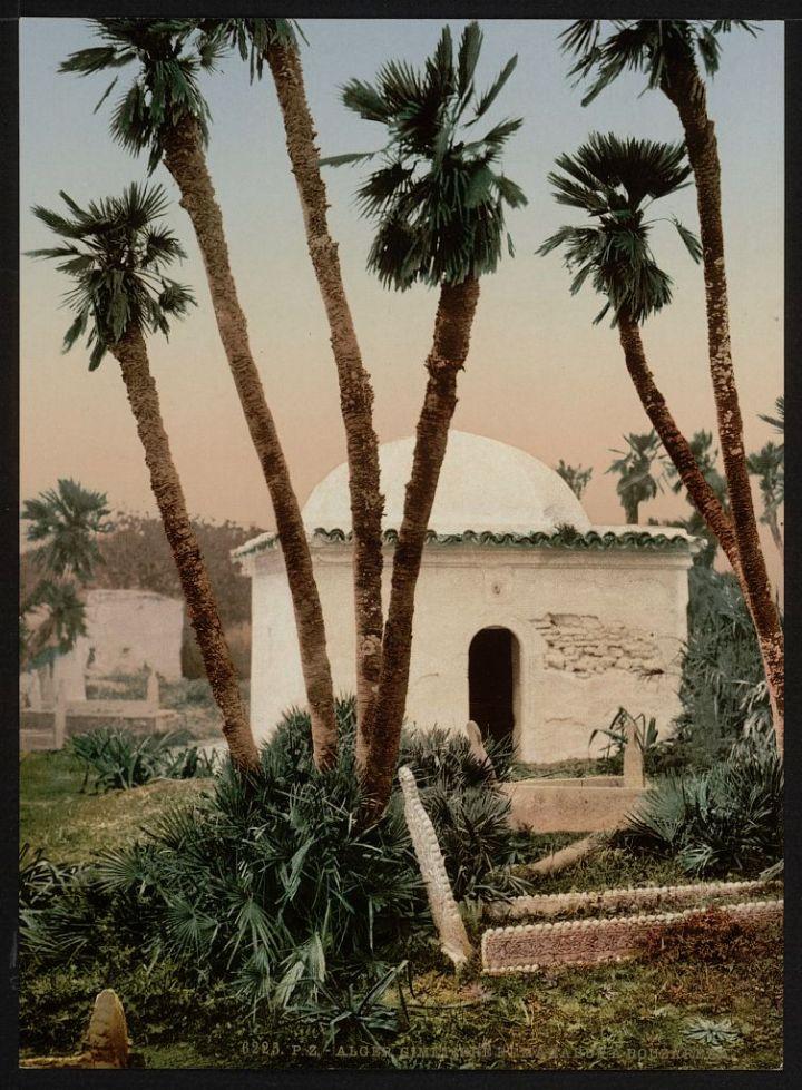 le cimetière avec mausolée Alger
