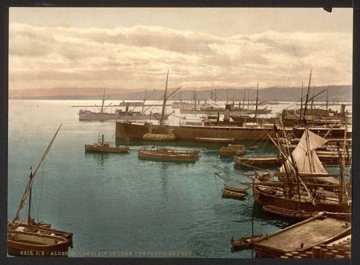 le port au clair de lune I Alger