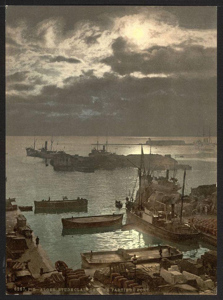 le port au clair de lune II Alger